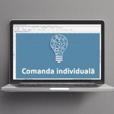 Comanda individuală